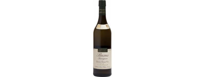 6 x Buxus Sauvignon Blanc - Louis Bovard